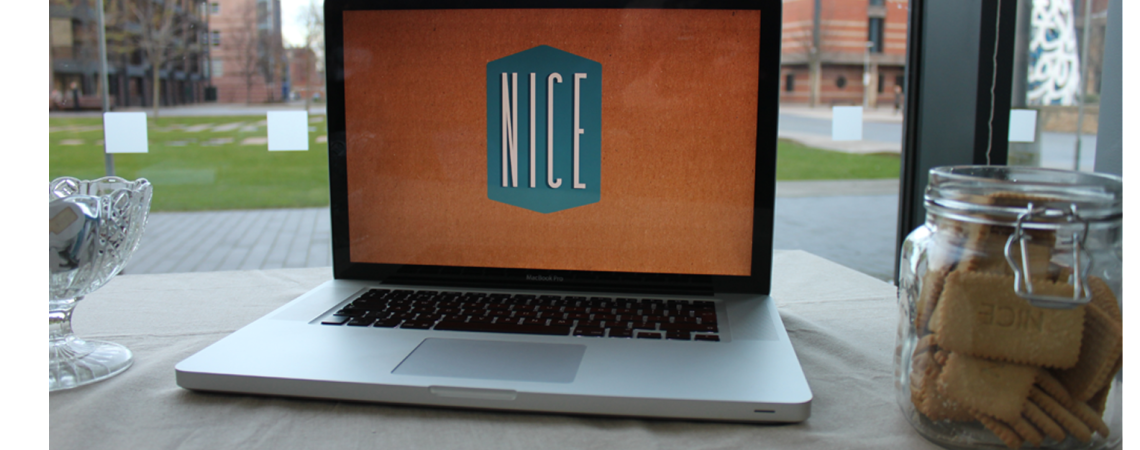 The NICE Programme